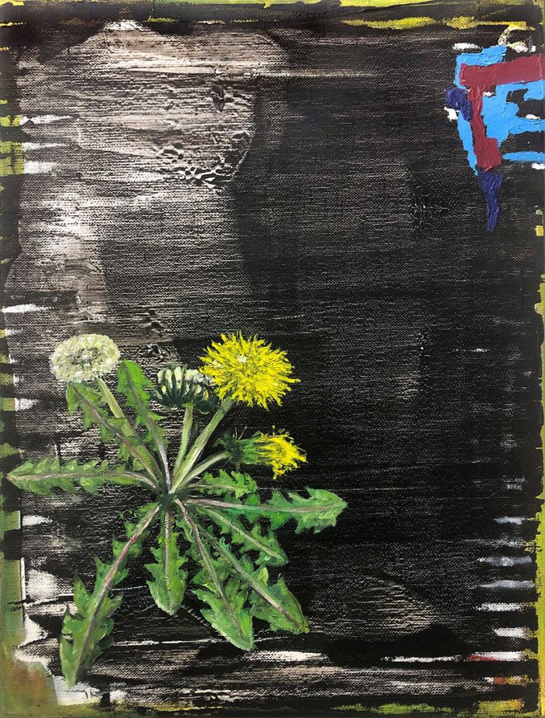 Löwenzahn 1 – 40 x 30 cm – Oil on canvas – 2019